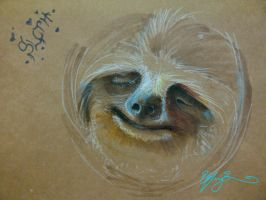 Sloth by TheGoldenGizmet