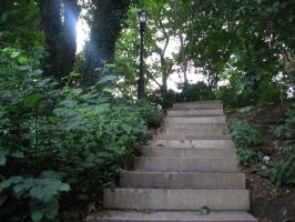 Stairs by Polly-Stock