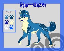 Star-Gazer Ref by Flame-Expression
