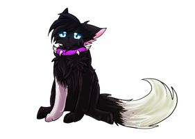 {Warrior cats}Scourge by HalfLight-Dimondcady