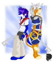 Kingdom Hearts II Cosplay by That-Stupid-Dingo