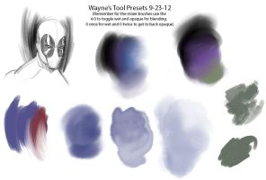 Wayne's Photoshop CS6 Preset Tools by WayneParker