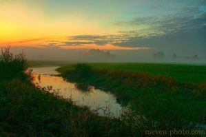 Evening in the Danube wetlands by brijome