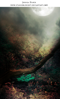 Tree Spot premade BG by StarsColdNight