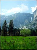 Yosemite Valley by ChillmodeDesign