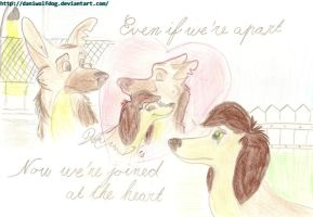 Now we're joined at the heart by DaniWolfdog
