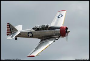 North American SNJ-5 Texan by AirshowDave