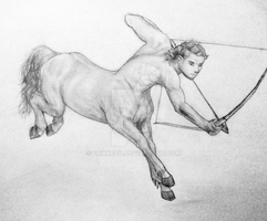 My very first centaur by frikkebn