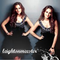 Leighton Meester. by ImOnABoatMotherfckr