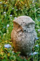 Stoney Owl by nazzara