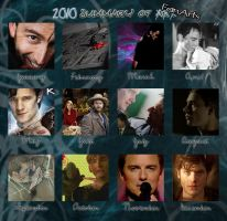 Duam's 2010 Summary of Fanart by duamdrallibor