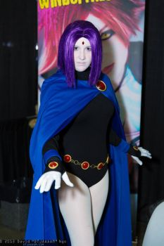 Raven by SkyelineProductions