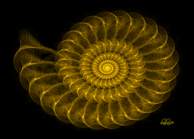 Golden Nautilus by baba49
