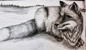 fox by veeluu