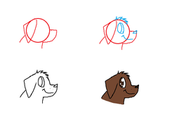 How To Draw A Dog Head by kittyproc
