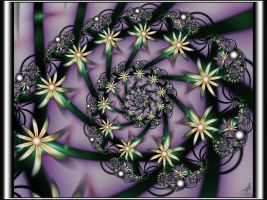 clematis by coby01