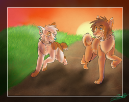 ..::Sunset Run::.. Gift art. by Wolfen107