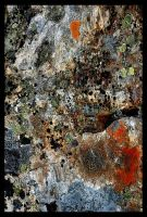Abstract Canvas II by Shmithers