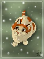 A kitten under the snow by ClaireLyxa