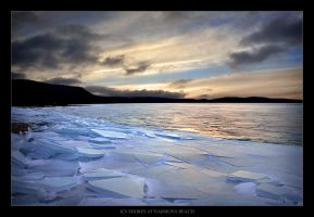 Icy Shores at Harmony Beach by tfavretto