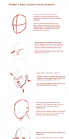 Tutorial: Facial Anatomy by HollowHikari