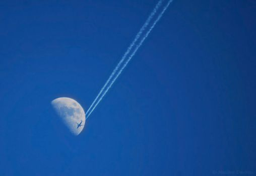 Flight For The Moon by MaximeDaviron
