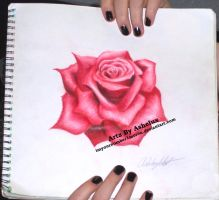 Simple Rose by ImYourNumber1Moron