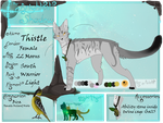 Thistle | South Region Warrior | TBS by Shireling-Archer