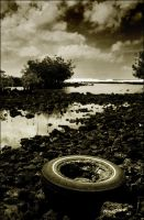 poho'iki: once upon a tire by niimo
