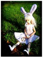 White Rabbit by dollhaus