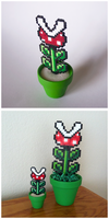 Mini Piranha Plant by Night-TAG