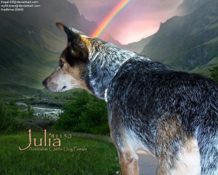 Julia by Cowgirl90