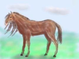 Horsey by MakaniValur