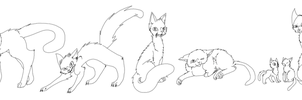 Warrior Cat Bases by prussiawashere999
