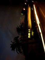 Night Lights 1 by Know-The-Ropes