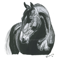 Charcoal Mare by Ahuvah