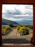 Framing the High Paramo by volpe60610