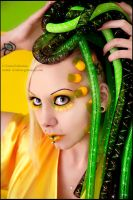 . pineapple . by Countess-Grotesque