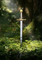 Sword of the Kings by MD-Arts