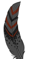 Feather custom by gold-adopts