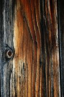 Texture 14 by Mithgariel-stock