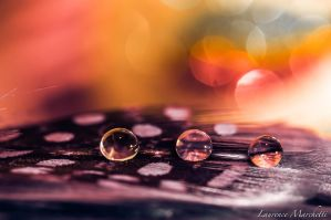 Of dots and drops by Gallynette