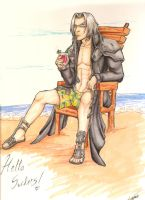 Sephiroth on vacation by furball891