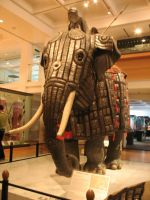 War elephant stock 4 by Random-Acts-Stock