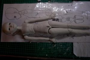 BJD Project A: Day 5 - 6 by materiae