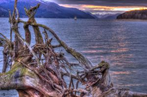 Stumped by spoox