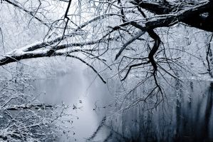 winter wonderland by Alesana-x-Fan
