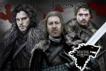 Game of Thrones (Stark family) by GriubitsArt