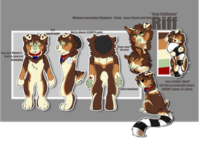 Riff reference sheet 2013 by pandadoge