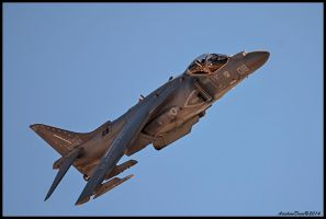 AV-8B Harrier by AirshowDave